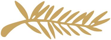 palma d'oro